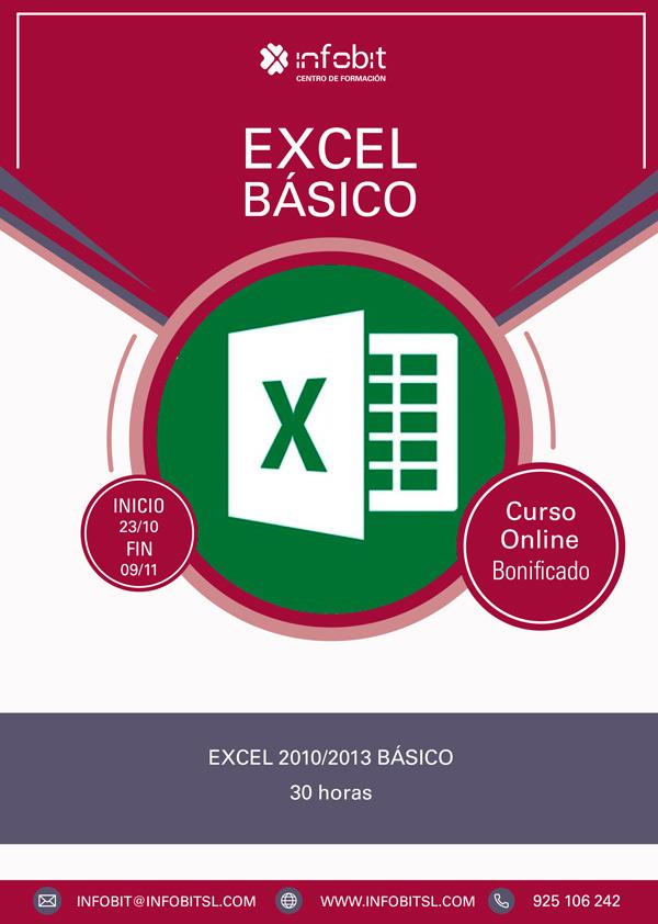 Excel Básico 2010/2013. Online